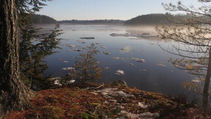 scenery image