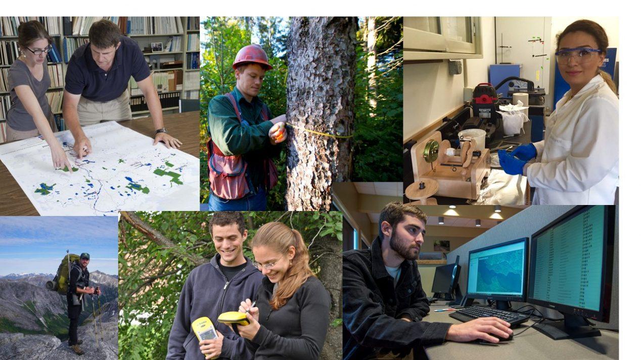 Grad picture collage