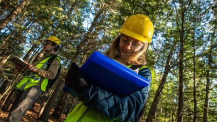 Amber Roth Deadwood Assessment Field work, Demeritt Forest